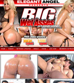 Big Wet Asses Adult Review