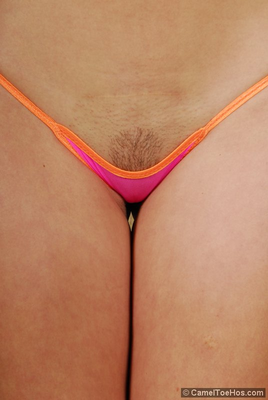 Click Here To Read Full Camel Toe Hos Review